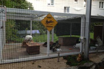 Außengehege für Kaninchen und Meerschweinchen