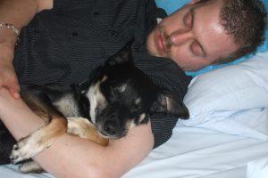 Bindung zwischen Mensch und Hund
